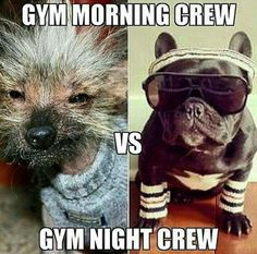 Gym Morning Crew vs Gym Night Crew